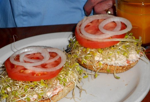 Toasted bagel, sprouts, and cream cheese from the Antique Sandwich Company in Ruston  - image.