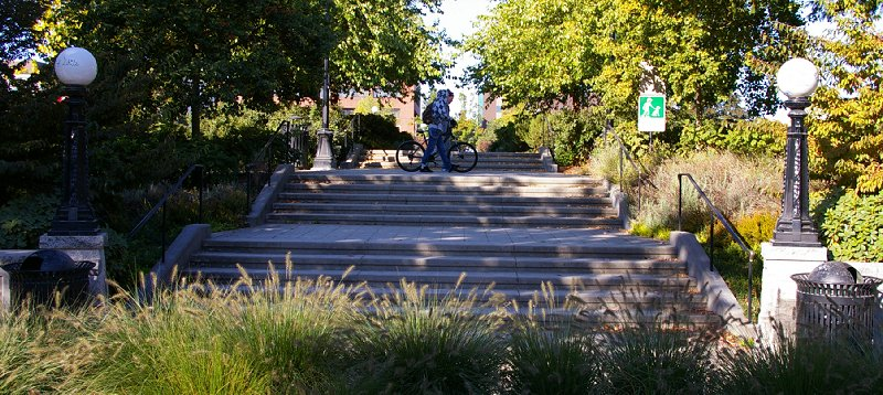 Cal Anderson Park on Capitol Hill in Seattle, Washington - Photo Image.