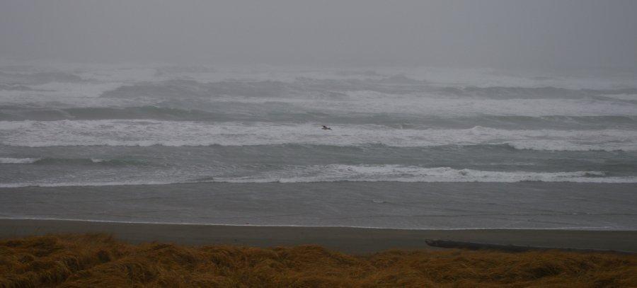 A winter storm beachscape in Ocean Shores Washington.
