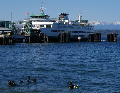 SCUBA divers and the Kingston Ferry in Edmonds, Washington.