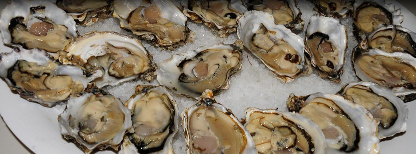 OysterFest Shelton, Washington - photo.