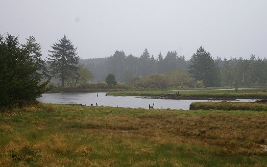 Pasture and creek that empties into Pacific Ocean inlet at Copalis Washington - image.