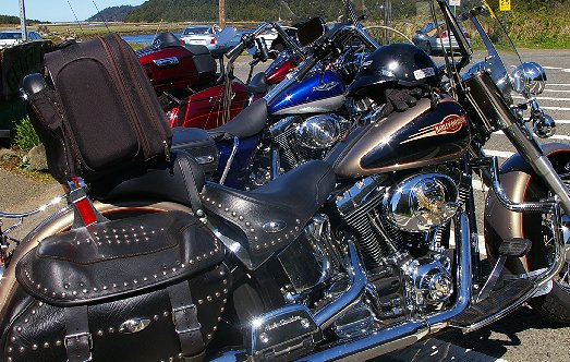 Harley Davidsons parked outside the Green Lantern Pub in Copalis Washington - image.