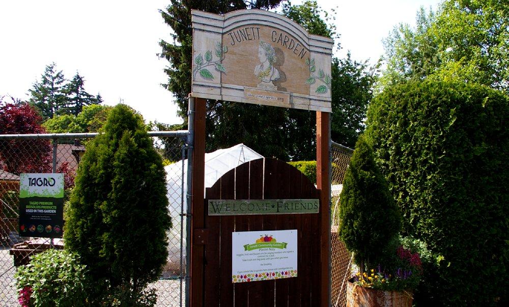 Junett Garden - Community Garden Tacoma - image.