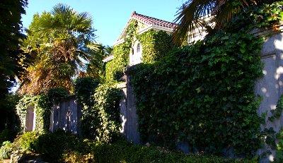 Villa St. Stefan Seattle Vacation Rental.