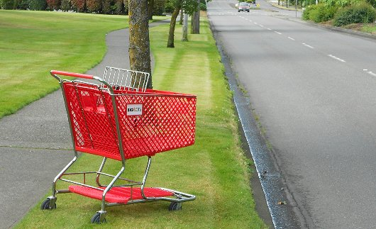 A Big Lots shopping cart on North Pearl in Tacoma - image.