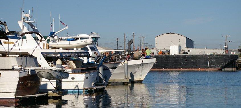 My Girl Charter Boat Saturn Barter Social, may girl charter boat olympia tacoma seattle, My Girl Charter Boat Saturn Barter Social tacoma wa washington.