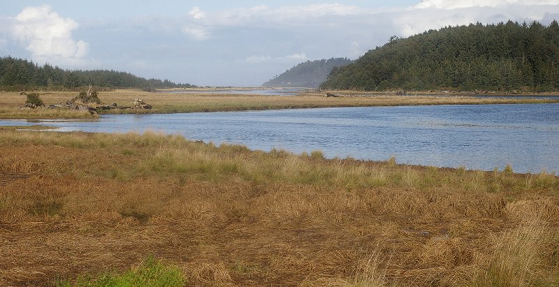 An inlet near Copalis and Cedar Creek - image.