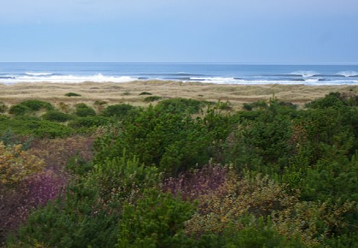 The view from the balcony of The Grey Gull in Ocean Shores - image.
