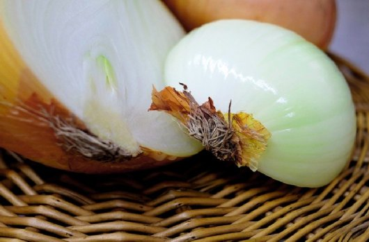 Onions for roast beef hash in Tacoma, Washington - image.