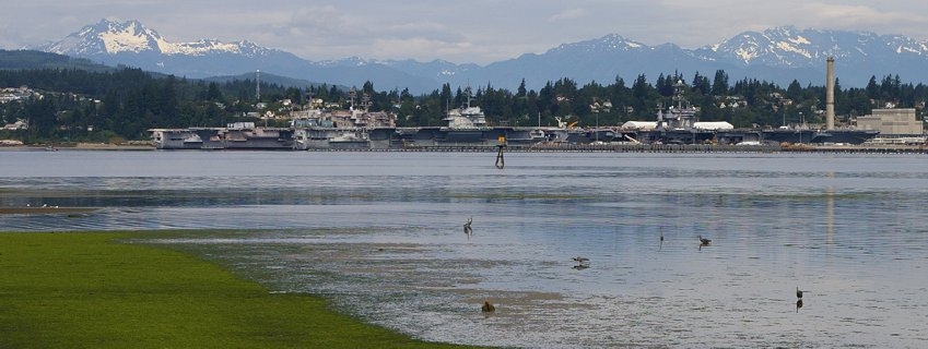 A beautiful summer day in Port Orchard.