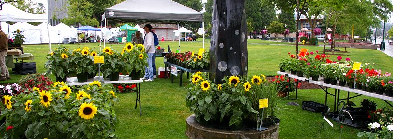 The Puyallup Farmers Market in Puyallup, Washington.