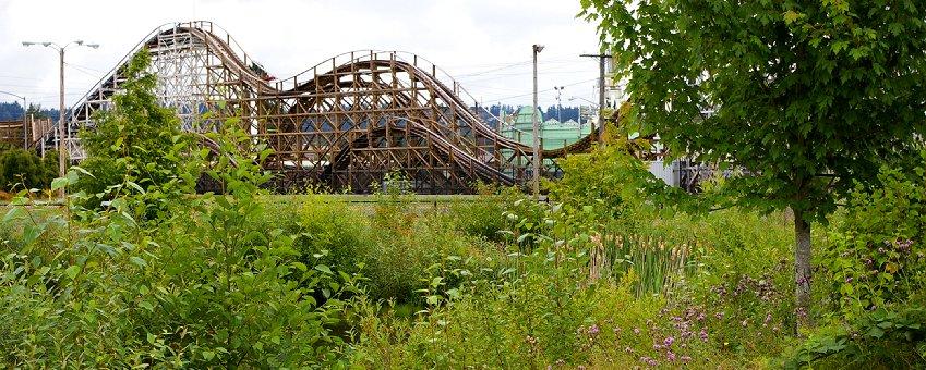 The roller coaster and wetland at the Puyallup Fair in Puyallup, Washington.