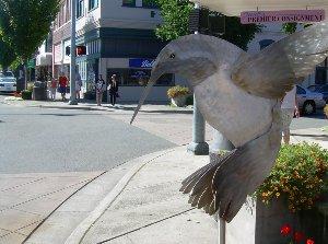 Hummingbird metal  artwork in downtown Puyallup.