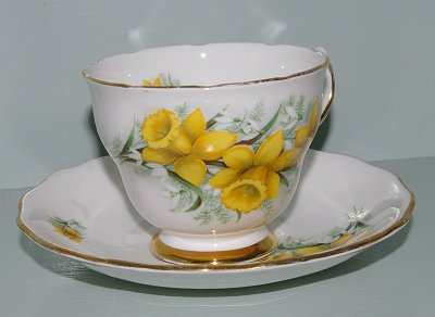 A daffodil teacup at our cute little cottage in Sumner, Washington.
