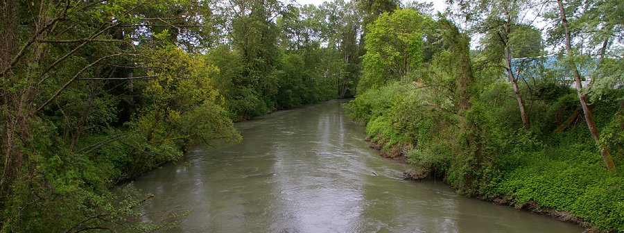The view from the copper bridge of the White River in Sumner, Washington.