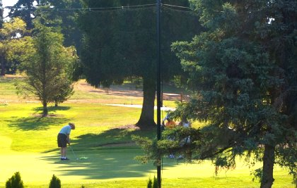 Looking on the 9th hole at Allenmore Golf Course in Tacoma - image.