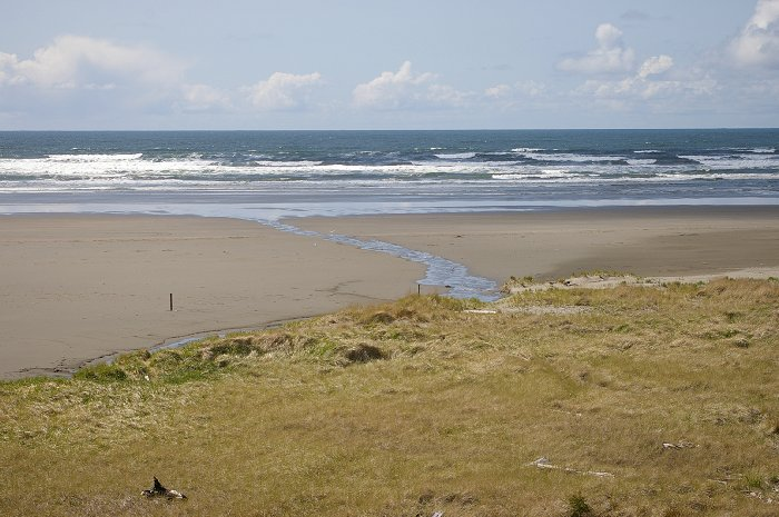The view of the beach and the dunes from the Quinault Resort.