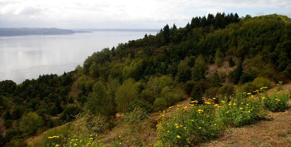 Scenic view of an old gravel pit on Vashon Island - image.